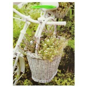 Kerékpáros Ajándéktáska Zöld Kosaras